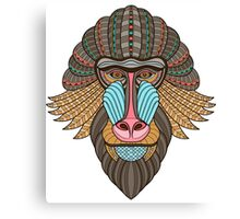 Monkey gift Canvas Print