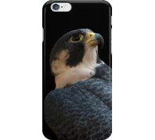 Peregrine iPhone Case iPhone Case/Skin