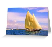 Sailing The Sound Greeting Card