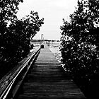 The Skinny Pier by keeganspera