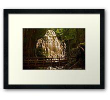 Ramona Falls 2 Framed Print
