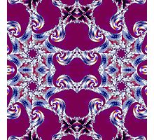 Burgandy abstract Photographic Print
