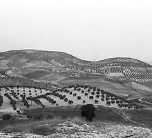 Andalucia Landscape by James2001