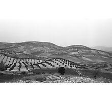 Andalucia Landscape Photographic Print