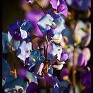 Wild Flower iphone case!  by Anna Ryan