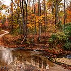 Over the Creek and Thru the Wood by Chelei