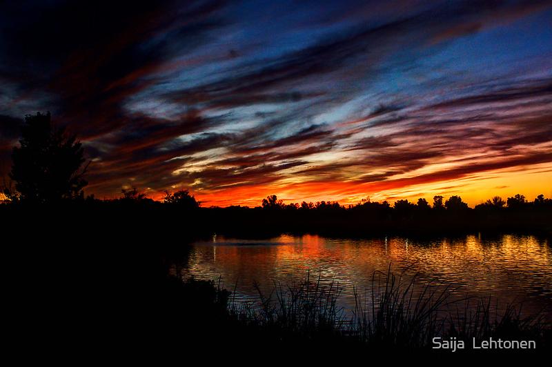 As the Sun Goes Down by Saija  Lehtonen