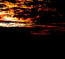 Fiery Bush Sunset by evansoz
