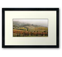 Mendocino Vineyard Framed Print