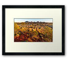 The Olgas Sunrise Framed Print