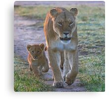 Following in Mother's Footsteps Canvas Print