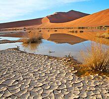 Beautiful Namibia by evthomas