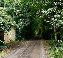 Hidden Shed by Russell Charters
