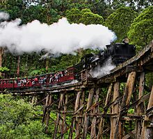 Puffing Billy by Kim Andelkovic