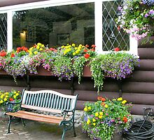 Window box at Capilano restaurant, Vancouver, Canada by logonfire