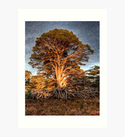 Liquified Tree (best large) Art Print
