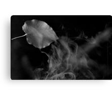 smoke and falling leave 2 Canvas Print