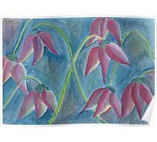 Strange tulips Poster