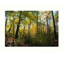 golden green path  Art Print