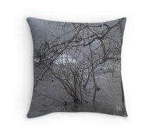 Gumballs Above the Winter Flood Throw Pillow