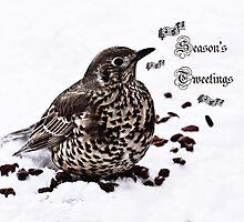Season's Tweetings by inkedsandra