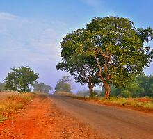 Journey to Heaven ( Revisited ) by Prasad