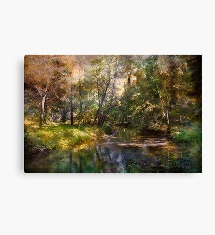 Hopkins Pond, Haddonfield, N.J. Canvas Print