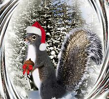 .¸¸¸.•*•♪ღ♪ MY SQUIRRELLY GIFT I GIVE TO U HAVE A NUTTY CHRISTMAS  .¸¸¸.•*•♪ღ♪ by ╰⊰✿ℒᵒᶹᵉ Bonita✿⊱╮ Lalonde✿⊱╮