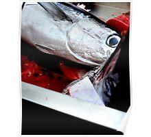 Kill fish! Poster