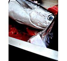 Kill fish! Photographic Print