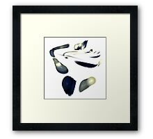 Traces! Framed Print