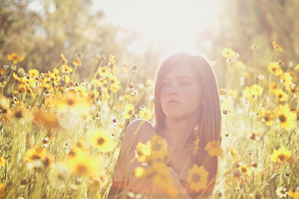 Sunlit Beauty II by Sarah Moore