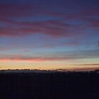 An Icon at Sunrise, Allora, Qld Feb 2010 by Odille Esmonde-Morgan