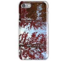 Rainbow & Trees-H... iPhone Case/Skin