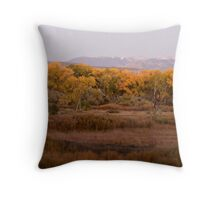 Southwest Panorama Throw Pillow