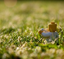 Cuppa on the lawn by William Rottenburg