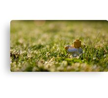 Cuppa on the lawn Canvas Print