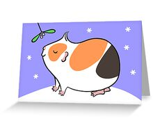 Guinea-pig Under the Mistletoe  Greeting Card