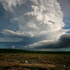 Downunderchase Weather Calendar - Anthony Cornelius by Anthony Cornelius