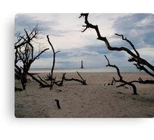 Beach Trees Morris Island Lighthouse Canvas Print