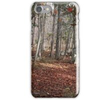Potomac Woodlands iPhone Case/Skin