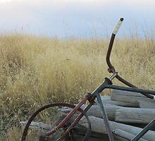 Resting Bike by Kathi Arnell