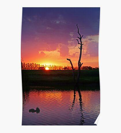 Sunset at Elmore Poster