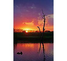 Sunset at Elmore Photographic Print