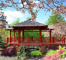 Pagoda, Rhododendron Gardens, Emu Valley, Tasmania by Rosdenphoto
