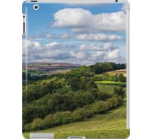 Surprise View iPad Case/Skin