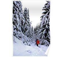 Walking in the Winder Wonderland Poster