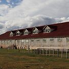 Patagonian Shearing Shed, Estancia Caleta Josefina, Chile by Coreena Vieth