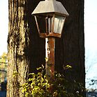 Lamp Post~ by Virginian Photography (Judy)