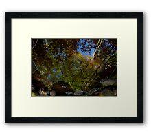 Reflective Stream Framed Print